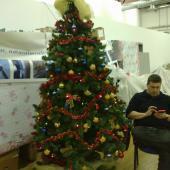 L'albero di Natale + collega