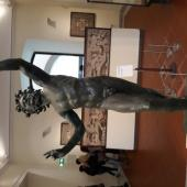MUSEO DI NAPOLI